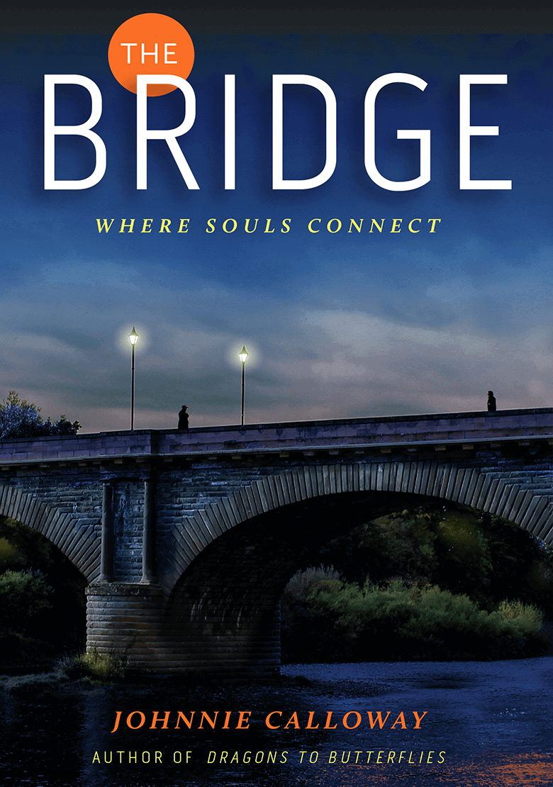 Book-TheBridge_780x1110